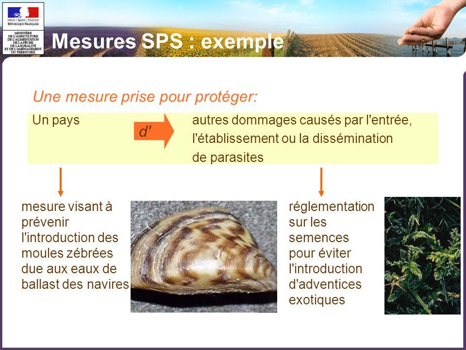 Mesures SPS : exemple Une mesure prise pour protéger: d