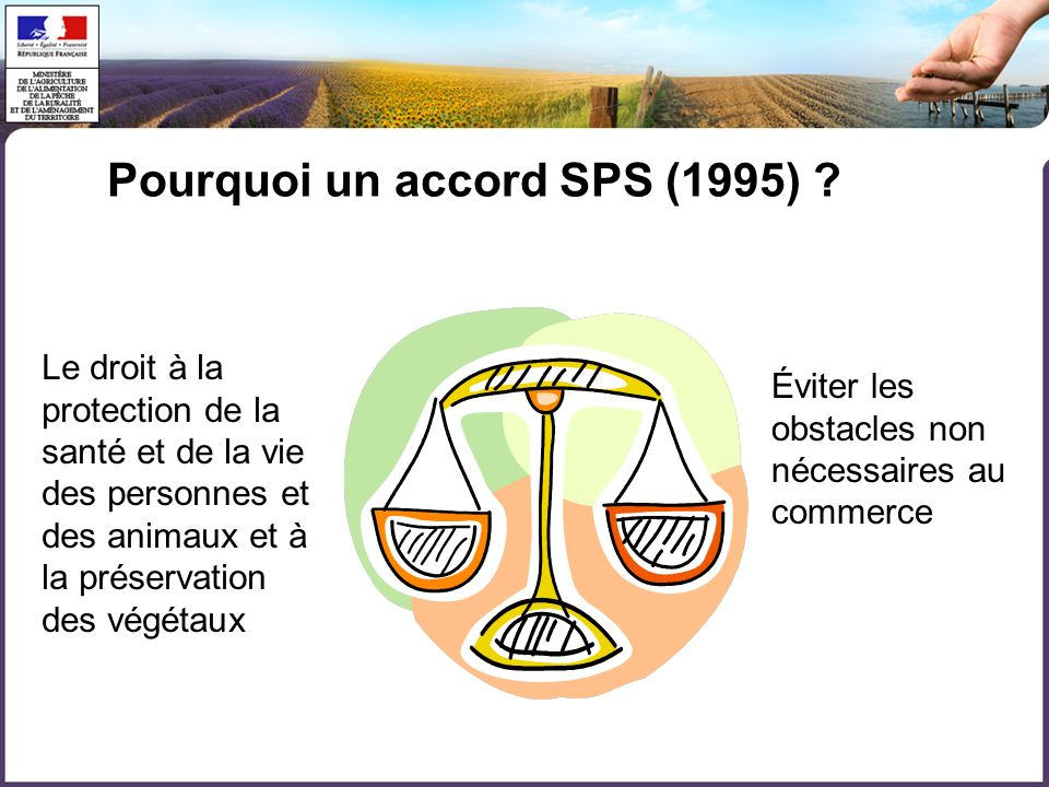 Pourquoi un accord SPS (1995)