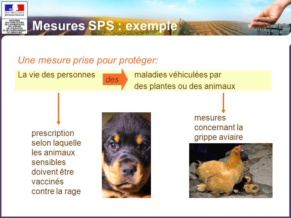 Mesures SPS : exemple Une mesure prise pour protéger: