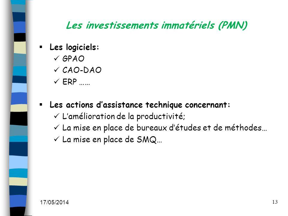 Les investissements immatériels (PMN)