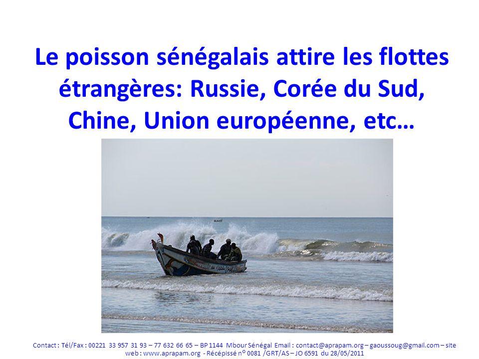 Le poisson sénégalais attire les flottes étrangères: Russie, Corée du Sud, Chine, Union européenne, etc…
