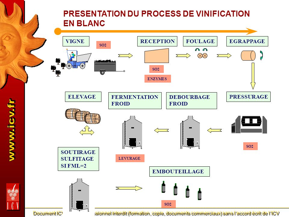 PRESENTATION DU PROCESS DE VINIFICATION EN BLANC