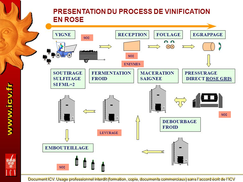PRESENTATION DU PROCESS DE VINIFICATION EN ROSE