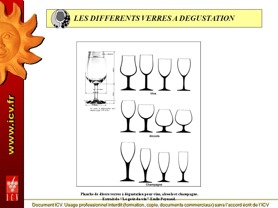 LES DIFFERENTS VERRES A DEGUSTATION