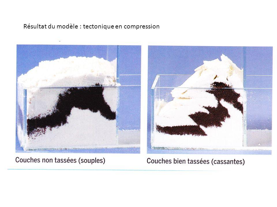 Résultat du modèle : tectonique en compression
