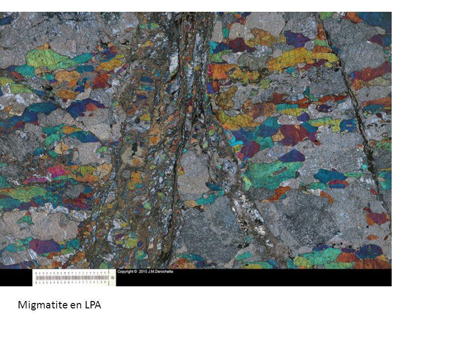 Migmatite en LPA
