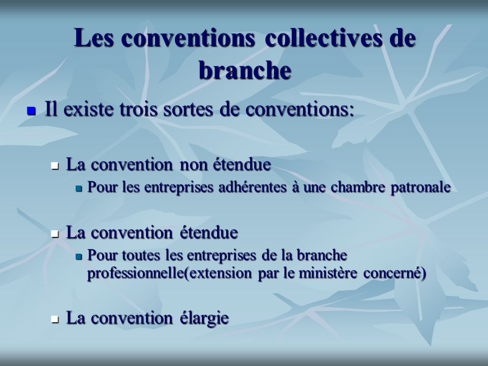 Les conventions collectives de branche