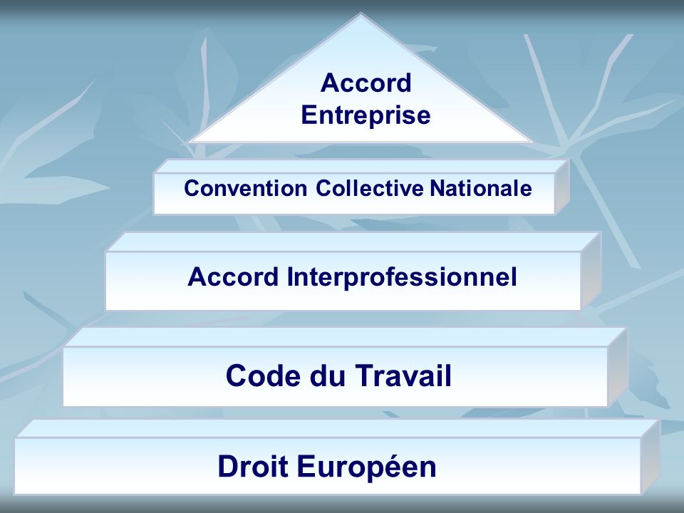 Convention Collective Nationale Accord Interprofessionnel