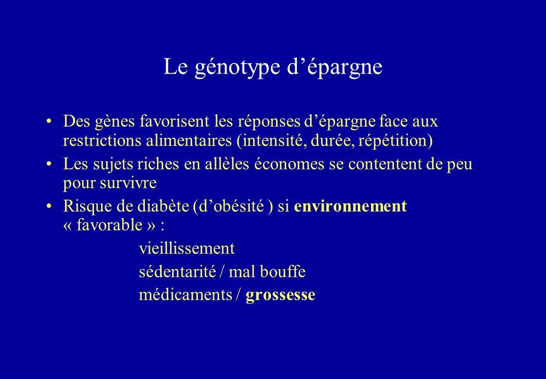 Le génotype d'épargne Des gènes favorisent les réponses d'épargne face aux restrictions alimentaires (intensité, durée, répétition)