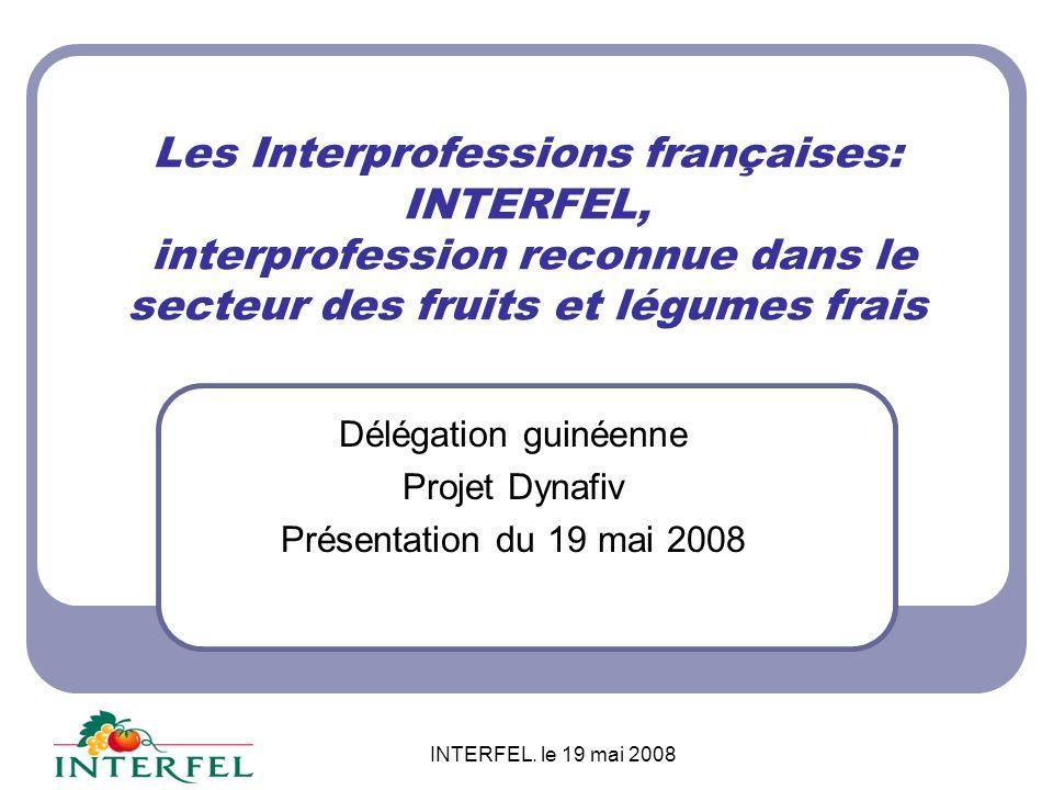 Délégation guinéenne Projet Dynafiv Présentation du 19 mai 2008