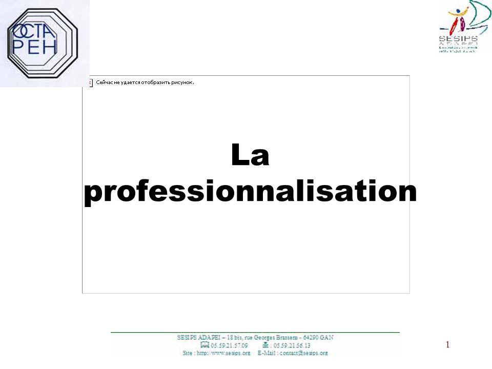 La professionnalisation