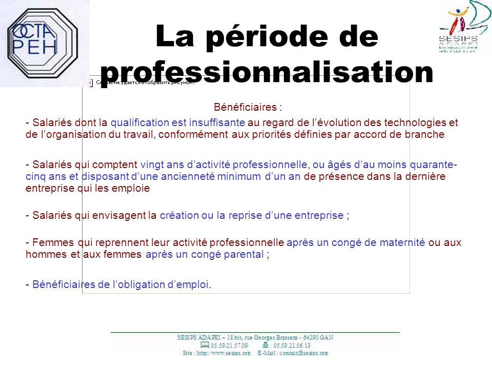 La période de professionnalisation