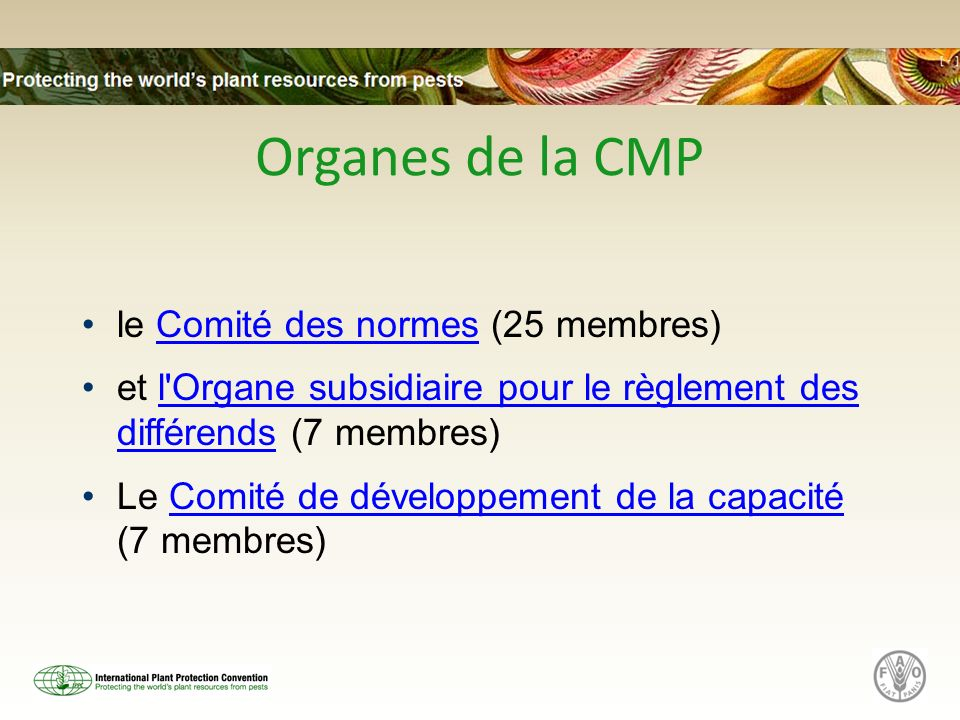 Organes de la CMP le Comité des normes (25 membres)