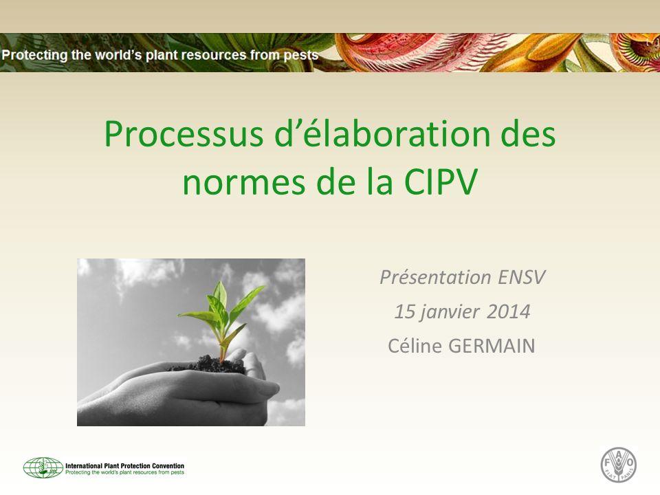 Processus d'élaboration des normes de la CIPV