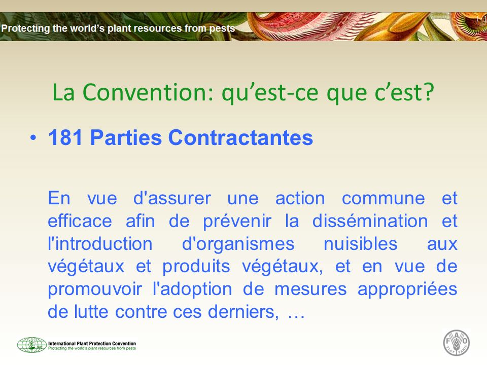 La Convention: qu'est-ce que c'est
