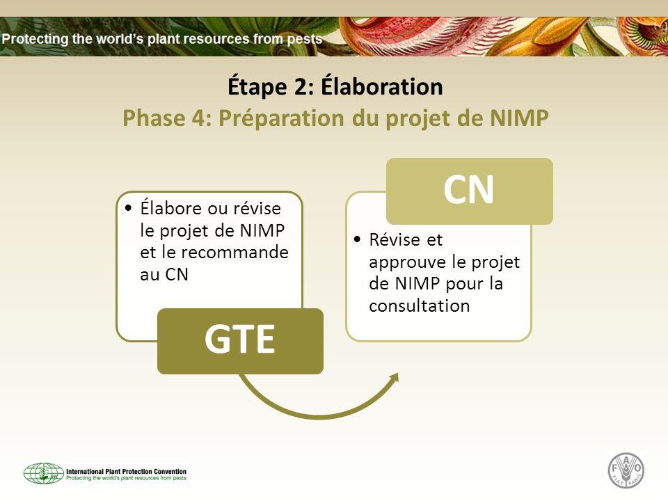 Phase 4: Préparation du projet de NIMP