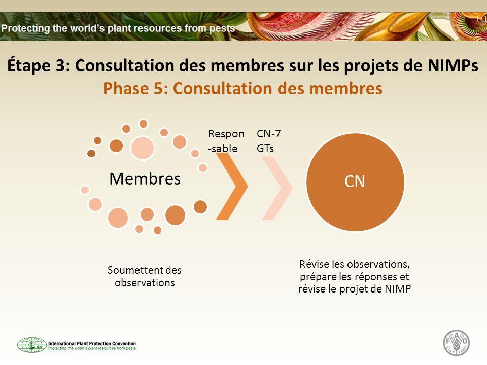Étape 3: Consultation des membres sur les projets de NIMPs
