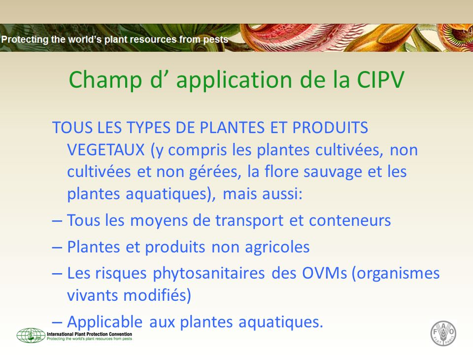 Champ d' application de la CIPV