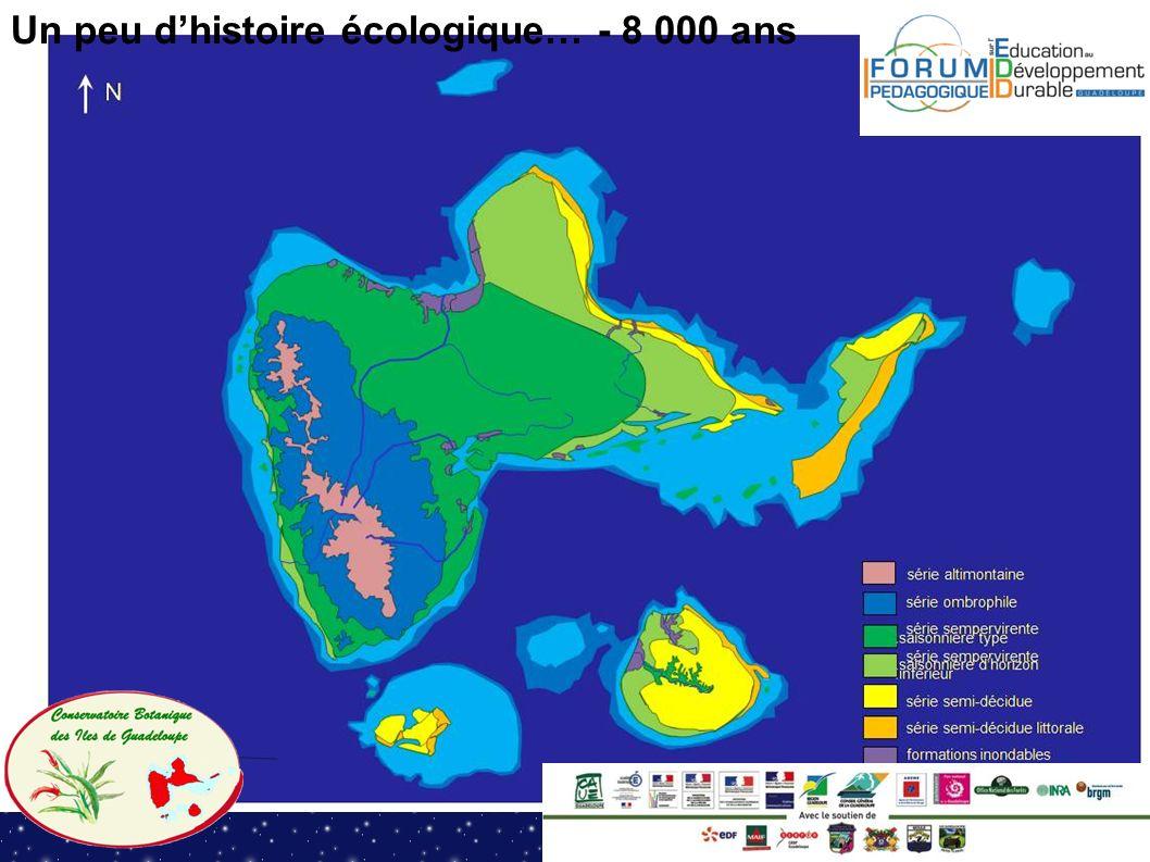 Un peu d'histoire écologique… - 8 000 ans
