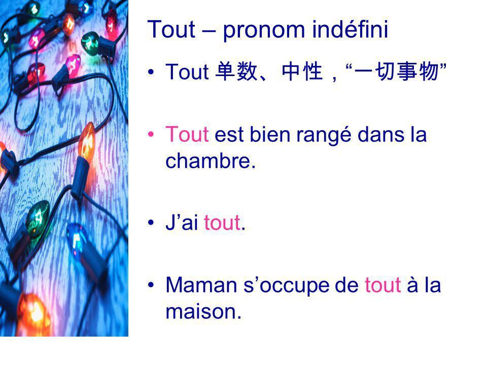 Tout – pronom indéfini Tout 单数、中性, 一切事物