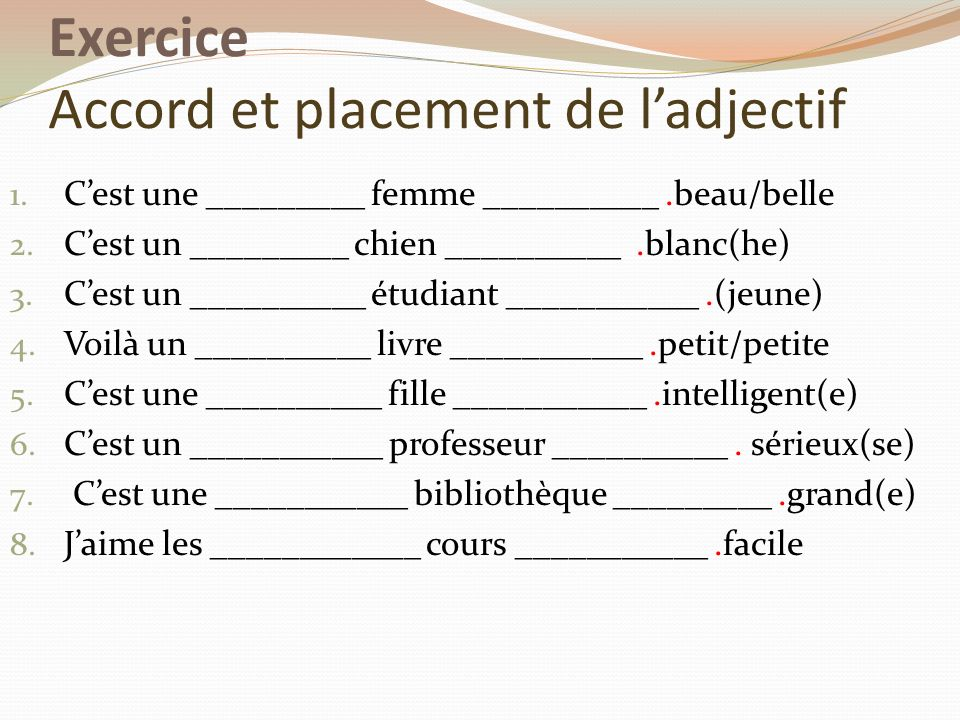 Exercice Accord et placement de l'adjectif