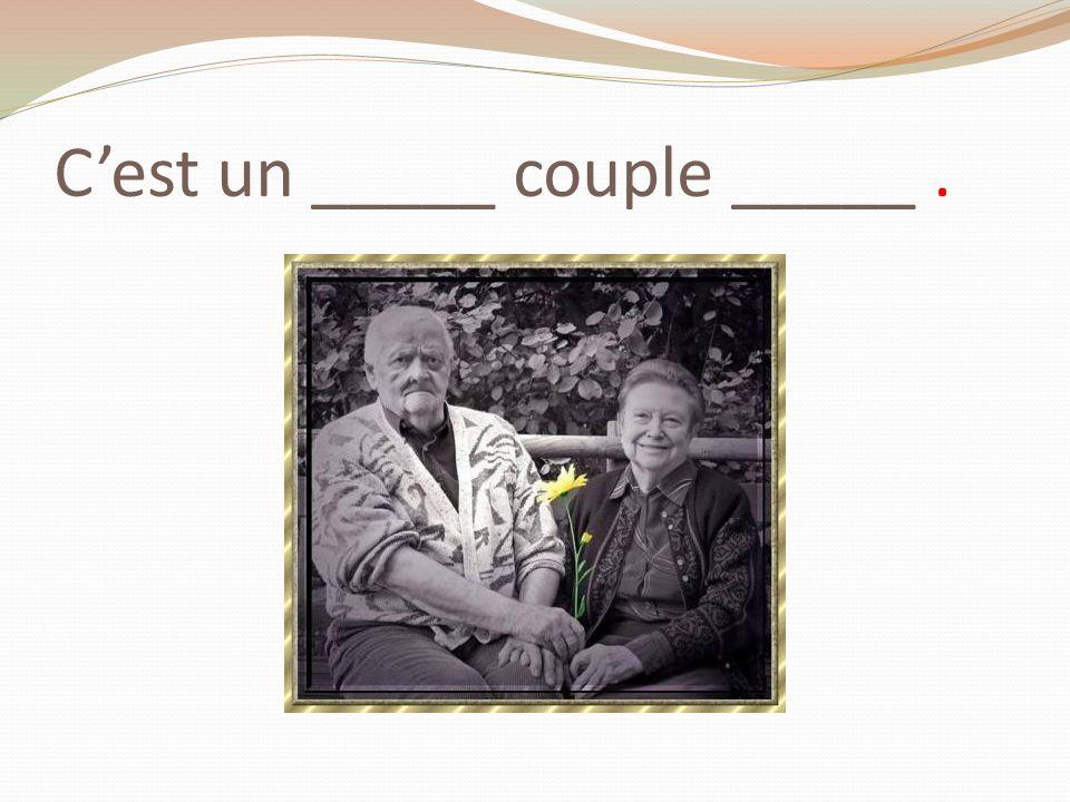 C'est un _____ couple _____ .