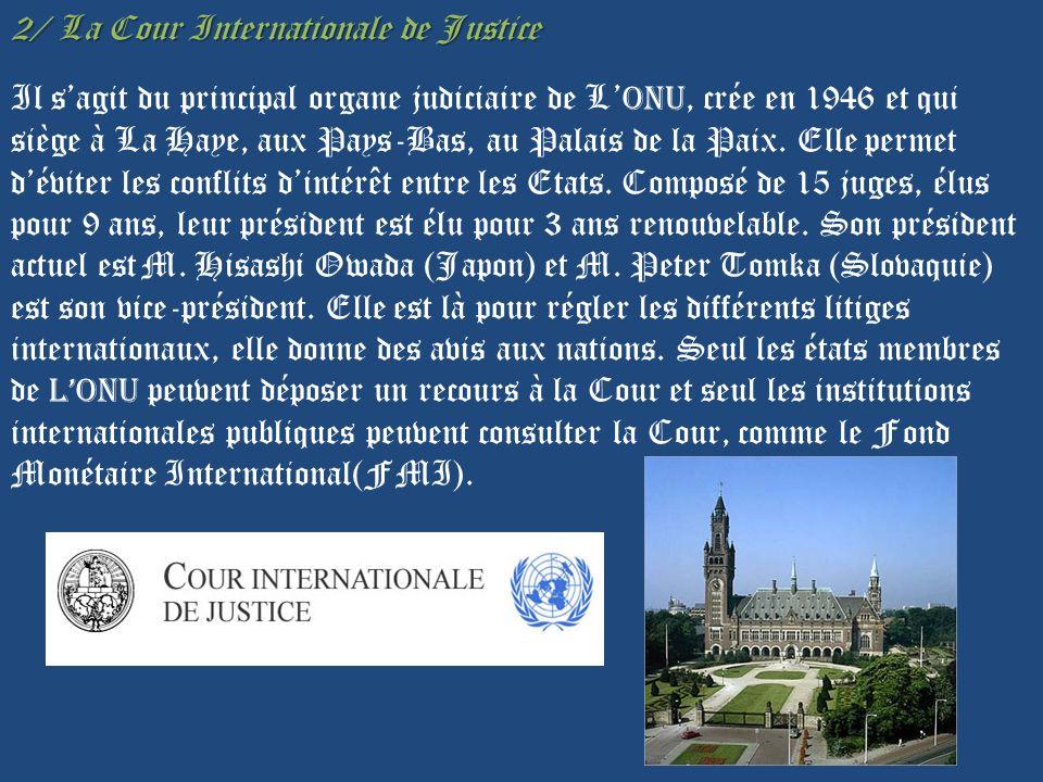 2/ La Cour Internationale de Justice Il s'agit du principal organe judiciaire de L'ONU, crée en 1946 et qui siège à La Haye, aux Pays-Bas, au Palais de la Paix.