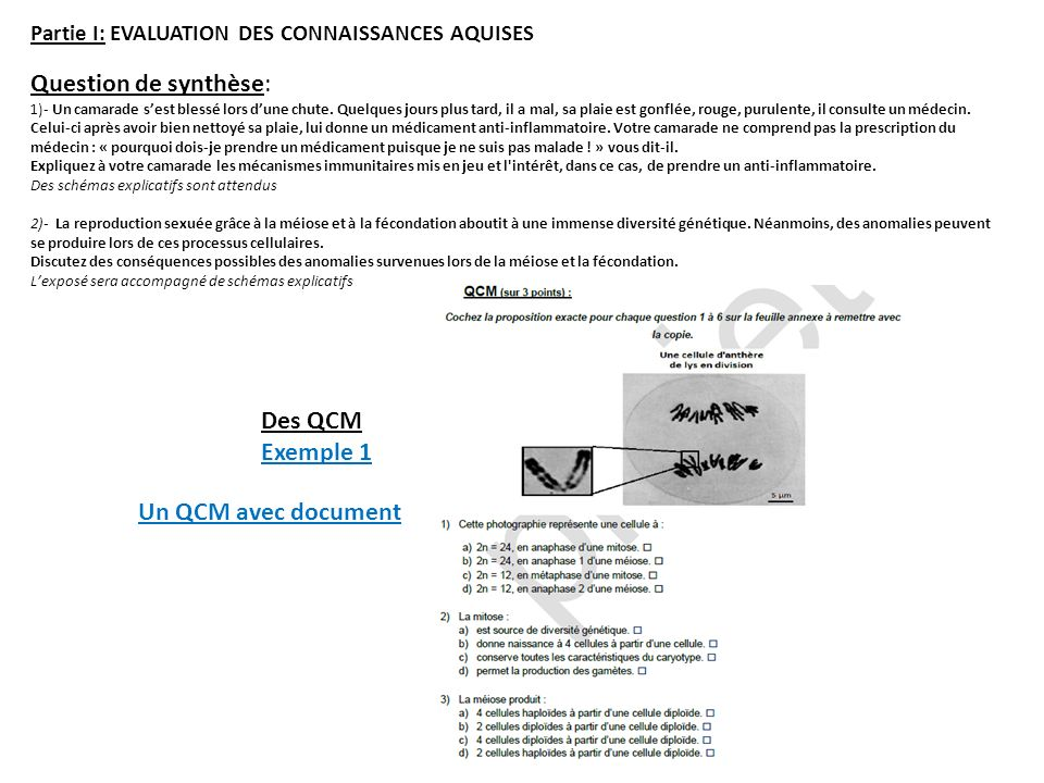 Question de synthèse: Des QCM Exemple 1 Un QCM avec document