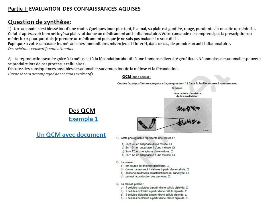 Question de synthèse: Des QCM Exemple 1 Un QCM avec document