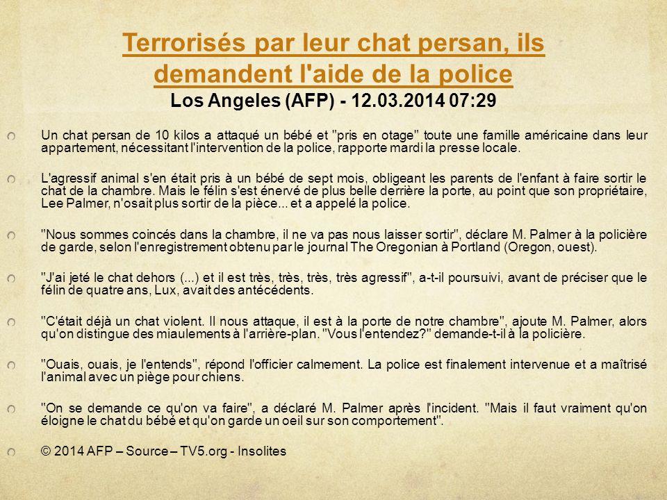 Terrorisés par leur chat persan, ils demandent l aide de la police Los Angeles (AFP) - 12.03.2014 07:29