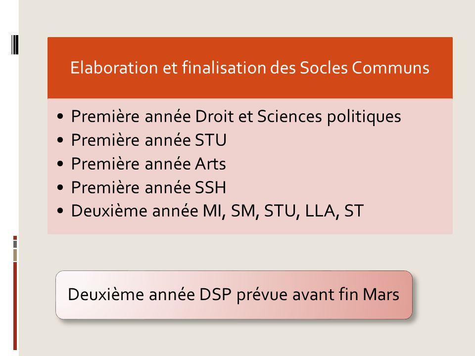 Elaboration et finalisation des Socles Communs