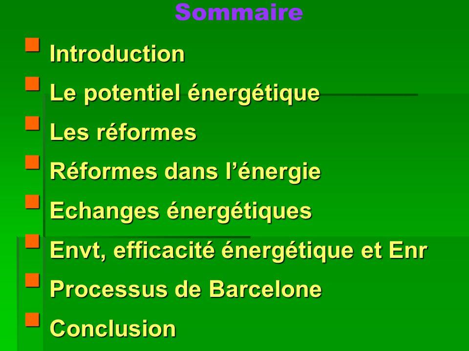 Sommaire Introduction. Le potentiel énergétique. Les réformes. Réformes dans l'énergie. Echanges énergétiques.