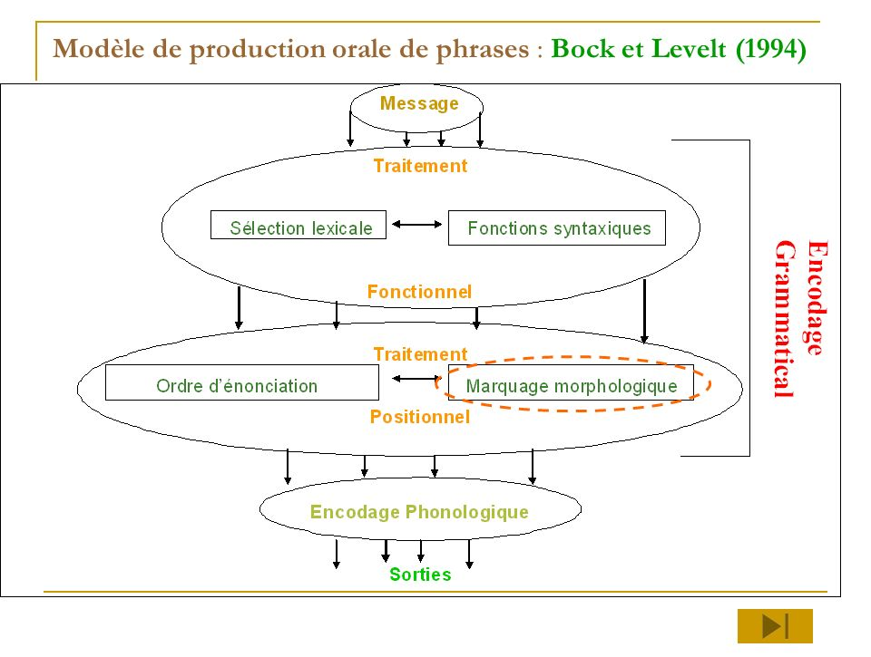 Modèle de production orale de phrases : Bock et Levelt (1994)