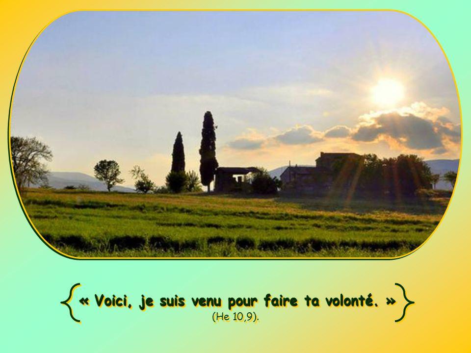 « Voici, je suis venu pour faire ta volonté. » (He 10,9).