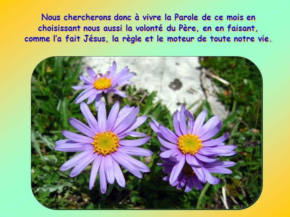 Nous chercherons donc à vivre la Parole de ce mois en choisissant nous aussi la volonté du Père, en en faisant, comme l'a fait Jésus, la règle et le moteur de toute notre vie.