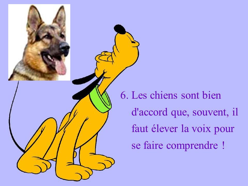 6. Les chiens sont bien d accord que, souvent, il faut élever la voix pour se faire comprendre !