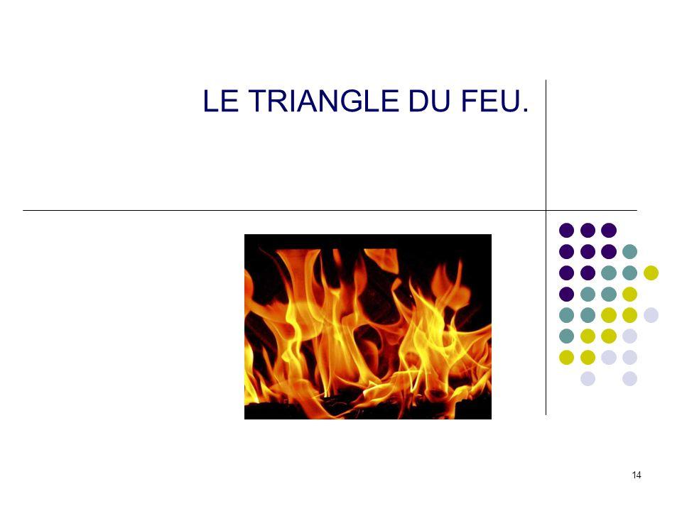 LE TRIANGLE DU FEU.