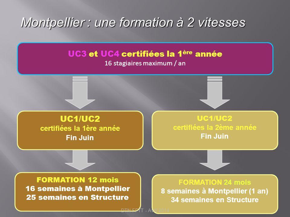 Montpellier : une formation à 2 vitesses