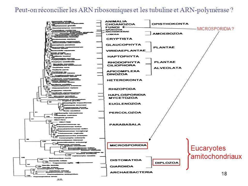 Peut-on réconcilier les ARN ribosomiques et les tubuline et ARN-polymérase