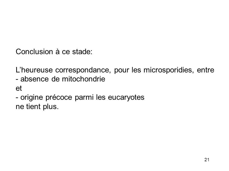 Conclusion à ce stade: L'heureuse correspondance, pour les microsporidies, entre. absence de mitochondrie.