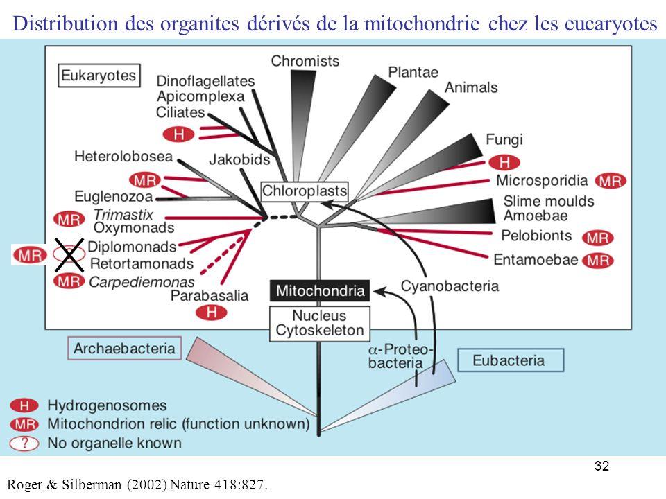 Distribution des organites dérivés de la mitochondrie chez les eucaryotes