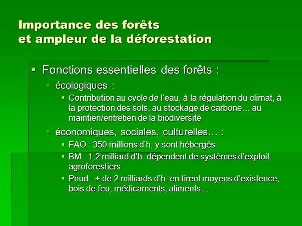 Importance des forêts et ampleur de la déforestation