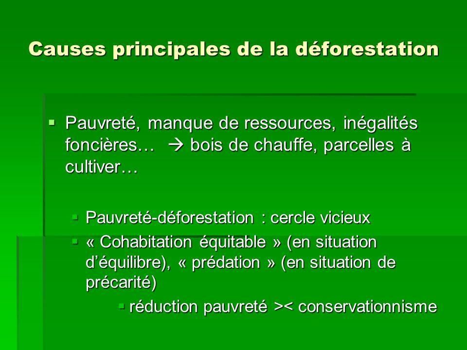 Causes principales de la déforestation