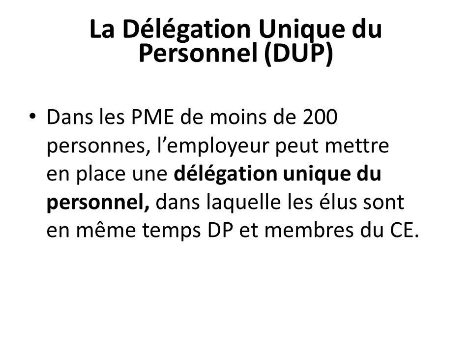 La Délégation Unique du Personnel (DUP)