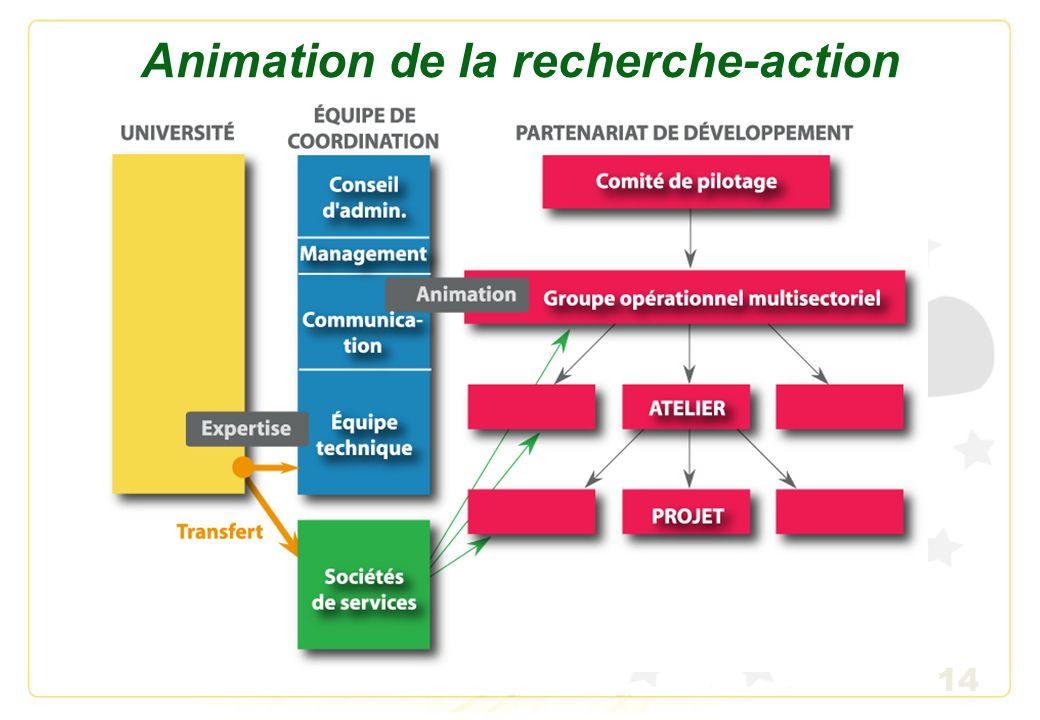 Animation de la recherche-action
