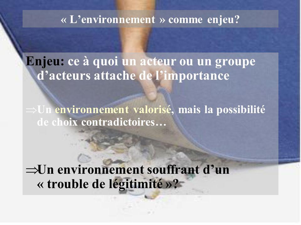 « L'environnement » comme enjeu
