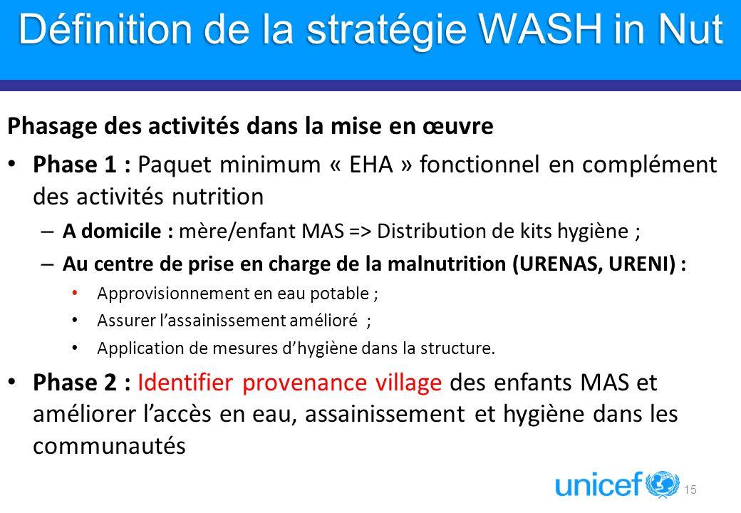 Définition de la stratégie WASH in Nut