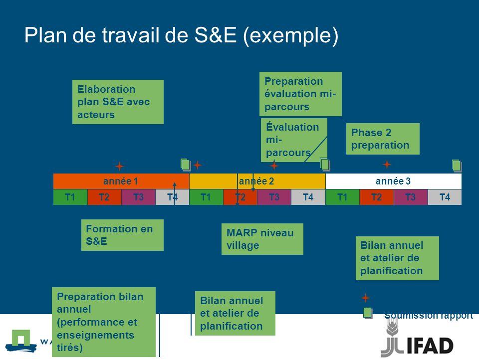 Plan de travail de S&E (exemple)
