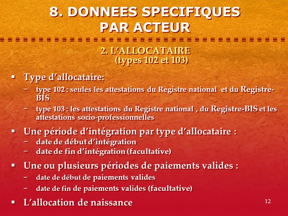8. DONNEES SPECIFIQUES PAR ACTEUR 2. L'ALLOCATAIRE (types 102 et 103)