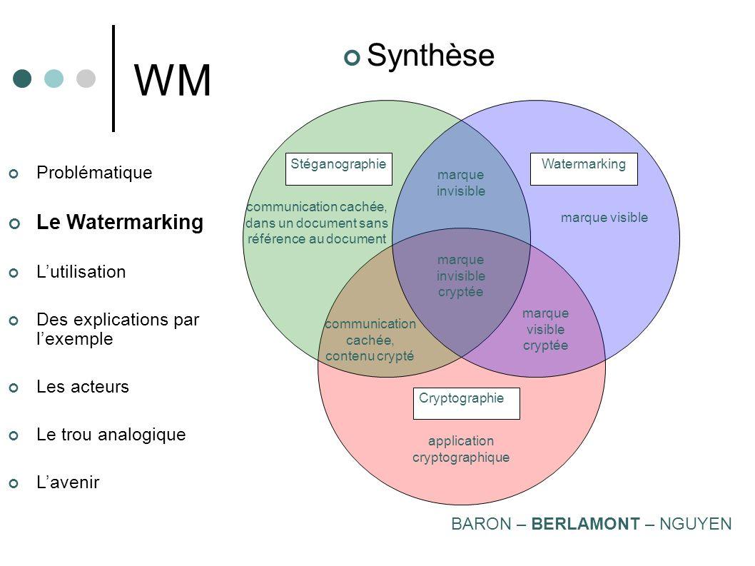 WM Synthèse Le Watermarking Problématique L'utilisation